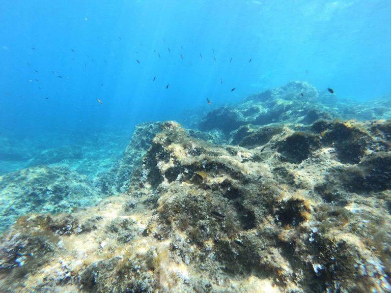 Becoming an PADI Open Water Diver at 65