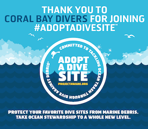 adopt a dive